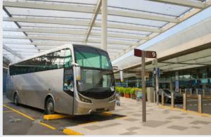 Punta Canan Transfer Service